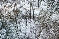 RCS-2018-01-13-Michigan-Grand-Rapids--DJI_0075.jpg