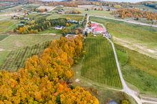 RCS-2018-10-26-Michigan-Traverse-City-Chateau-Grand-TraverseP4P2-DJI_0577-HDR.jpg