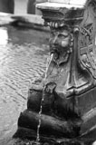 RCS-2013-07-20-Italy-Venice-Venetian-Fountain-venetian-fountain.jpg