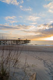 RCS-2016-02-12-Florida-Amelia-Island-_5D_29781.jpg