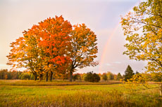 RCS-2012-10-03-Michigan-Lower-Peninsula-Fall-Rainbow-12-10-03_5D_2093-E-775.jpg