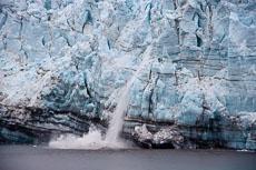 RCS-2009-08-27-Alaska-Glacier-Bay--09-08-27_MG_5319.jpg