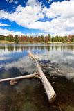RCS-2010-09-09-Colorado-Estes-Park-Rocky-Mountain-National-Park-IV-10-09-09_MG_4265-E-422.jpg