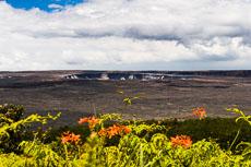 RCS-2007-08-22-Hawaii-Hilo-8086.jpg