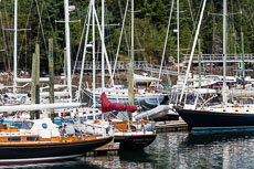 RCS-2013-08-28-Maine-Northeast-Harbor-_5D_8958.jpg