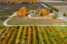 RCS-2018-10-25-Michigan-Leelanau-County-P4P2-DJI_0511-HDR.jpg