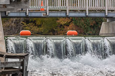 RCS-2018-10-25-Michigan-Leland-Fishtown_5D4_16519.jpg