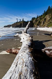 RCS-2011-09-28-Washington-Olympic-Peninsula-Olympic-National-Park-11-09-28_MG_6401.jpg
